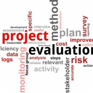 Project development, implementation and evaluation