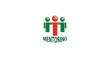 Mentoring Between Teachers in Secondary and High Schools